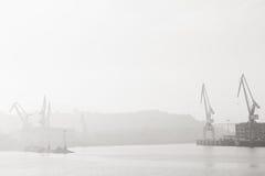 Γερανοί στον ποταμό Nervion Στοκ Εικόνες