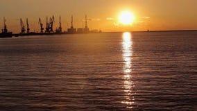 Γερανοί στο θαλάσσιο λιμένα στο ηλιοβασίλεμα, ένα λιμάνι κοντά στο θαλάσσιο λιμένα, όμορφο seascape, ένας μεγάλος θαλάσσιος λιμέν απόθεμα βίντεο