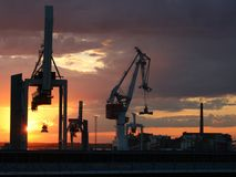 γερανοί Στοκ φωτογραφίες με δικαίωμα ελεύθερης χρήσης