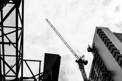 γερανός Στοκ Φωτογραφίες