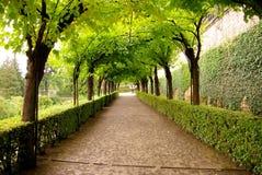 Γερμανία Wurzburg Στοκ Εικόνες