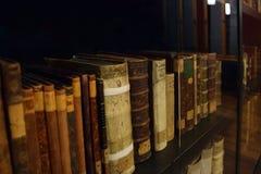 Γερμανική βιβλιοθήκη Eisenach Wartburg πόλεων Στοκ Εικόνες