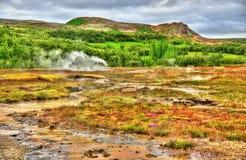 Γεωθερμικά ενεργός κοιλάδα Haukadalur στην Ισλανδία Στοκ Εικόνα