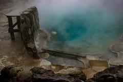 Γεωθερμική λίμνη σε Rotorua, Νέα Ζηλανδία Στοκ Εικόνα