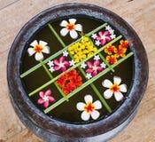 Γεωμετρική ρύθμιση των πολύχρωμων επιπλεόντων λουλουδιών στο ύφος της Zen Στοκ φωτογραφία με δικαίωμα ελεύθερης χρήσης