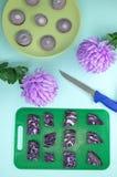 Γεωμετρική σύνθεση του λάχανου, κρεμμύδια, λουλούδια με ένα μαχαίρι στοκ φωτογραφίες με δικαίωμα ελεύθερης χρήσης