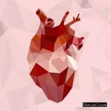 Γεωμετρική χρωματισμένη καρδιά Στοκ Εικόνα