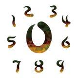 Γεωμετρικοί αριθμοί Στοκ Εικόνες