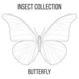 Γεωμετρικό εικονίδιο πεταλούδων Στοκ Φωτογραφίες
