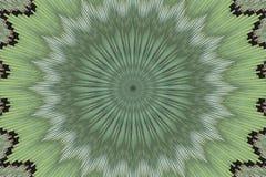 Γεωμετρικό λουλούδι σχεδίων διακοσμήσεων floral εθνικός απεικόνιση αποθεμάτων