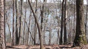 Γεωργία, λίμνη Alatoona, λίμνη Alatoona και η μαρίνα από την κορυφή του λόφου και μέσω των δέντρων απόθεμα βίντεο
