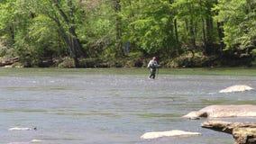 Γεωργία, πάρκο γεφυρών του Τζόουνς, ψαράδων Α στον ποταμό Chattahoochee και κολύμβηση δύο παπιών απόθεμα βίντεο