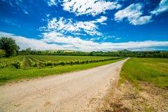 Γεωργία στους λόφους της Τοσκάνης και Romagna Apennines Στοκ Εικόνες