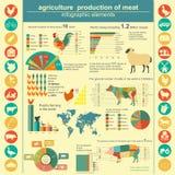 Γεωργία, infographics κτηνοτροφικής παραγωγής Στοκ Εικόνα