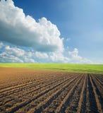 γεωργικά πεδία Στοκ Φωτογραφίες