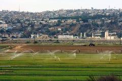 Γεωργικά πεδίο και Tijuana Στοκ φωτογραφία με δικαίωμα ελεύθερης χρήσης