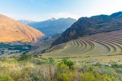 Γεωργικά πεζούλια του Περού Acchapata Pizac στο ηλιοβασίλεμα στοκ εικόνες