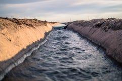 Γεωργική άρδευση με το νερό στοκ εικόνες με δικαίωμα ελεύθερης χρήσης