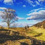 Γεωργική γη Στοκ εικόνα με δικαίωμα ελεύθερης χρήσης