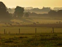 γεωργική misty ανατολή τοπίων Στοκ φωτογραφία με δικαίωμα ελεύθερης χρήσης