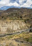 Γεωργικοί πεζούλια και ποταμός Colca Arequipa, Περού Στοκ Εικόνα