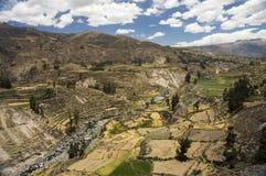 Γεωργικοί πεζούλια και ποταμός Colca Arequipa, Περού Στοκ φωτογραφίες με δικαίωμα ελεύθερης χρήσης