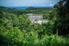 Γεωργικοί τομείς στη ζούγκλα στην Ινδονησία Στοκ φωτογραφία με δικαίωμα ελεύθερης χρήσης