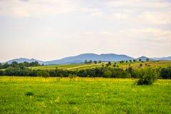 Γεωργικοί τομείς Carpathians Στοκ εικόνες με δικαίωμα ελεύθερης χρήσης