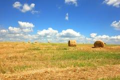 γεωργικοί όμορφοι ρόλοι τοπίων σανού Στοκ Εικόνα