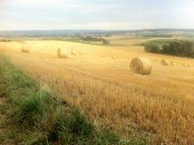 γεωργικοί όμορφοι ρόλοι τοπίων σανού Στοκ Φωτογραφία
