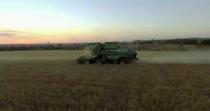 Γεωργικός συνδυάστε τη συγκομιδή ενός τομέα σίκαλης στο ηλιοβασίλεμα φιλμ μικρού μήκους
