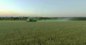 Γεωργικός συνδυάστε τη συγκομιδή ενός τομέα σίκαλης στο ηλιοβασίλεμα απόθεμα βίντεο