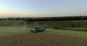 Γεωργικός συνδυάστε τη συγκομιδή ενός τομέα σίτου στο ηλιοβασίλεμα φιλμ μικρού μήκους