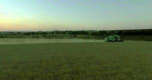 Γεωργικός συνδυάστε τη συγκομιδή ενός τομέα σίτου στο ηλιοβασίλεμα απόθεμα βίντεο