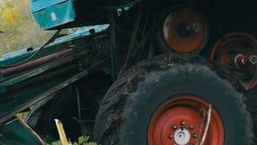 Γεωργικός συνδυάστε τις ξηρές συγκομιδές ηλίανθων συγκομιδών στον τομέα το φθινόπωρο απόθεμα βίντεο