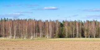 Γεωργικός τομέας που ήταν οργωμένα furrows για τη φύτευση των πατατών E στοκ φωτογραφίες
