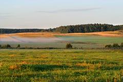 γεωργικό πεδίο φθινοπώρ&omicron Στοκ εικόνα με δικαίωμα ελεύθερης χρήσης