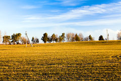 γεωργικό πεδίο Στοκ Φωτογραφίες