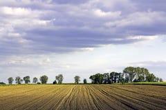 γεωργικό πεδίο Στοκ Εικόνα