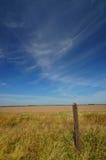 γεωργικό πεδίο στοκ φωτογραφία με δικαίωμα ελεύθερης χρήσης