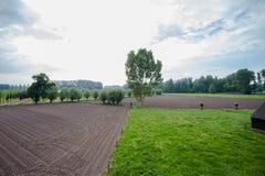 Γεωργικό τοπίο με τους πράσινους τομείς και την άποψη λιβαδιών ariel Στοκ Εικόνες