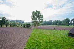 Γεωργικό τοπίο με τους πράσινους τομείς και την άποψη λιβαδιών ariel Στοκ φωτογραφίες με δικαίωμα ελεύθερης χρήσης