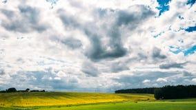 Γεωργικό τοπίο με το συναπόσπορο, ελαιόσπορος στην εποχή λιβαδιών τομέων την άνοιξη Κίτρινα λουλούδια Canola απόθεμα βίντεο