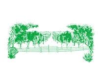 Γεωργικό τοπίο, οπωρώνας ελεύθερη απεικόνιση δικαιώματος