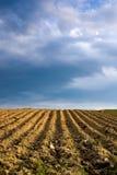 γεωργικό τοπίο Στοκ φωτογραφίες με δικαίωμα ελεύθερης χρήσης