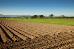 γεωργικό τοπίο Στοκ Εικόνες