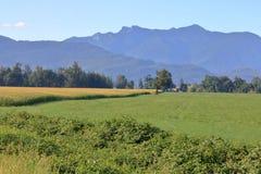 Γεωργικό τοπίο Chilliwack στοκ φωτογραφίες