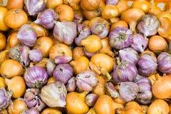Γεωργικό υπόβαθρο, δέσμη του ζωηρόχρωμου σκόρδου και κρεμμύδια σε έναν σωρό Στοκ Εικόνες