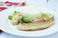 γεύμα Βρασμένο στον ατμό tilapia με το ρύζι Στοκ Φωτογραφίες