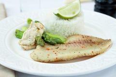 γεύμα Βρασμένο στον ατμό tilapia με το ρύζι Στοκ Εικόνα